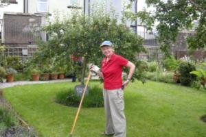 """Volunteer Hilary raking the """"plat"""", or lawn, in the small walled garden"""